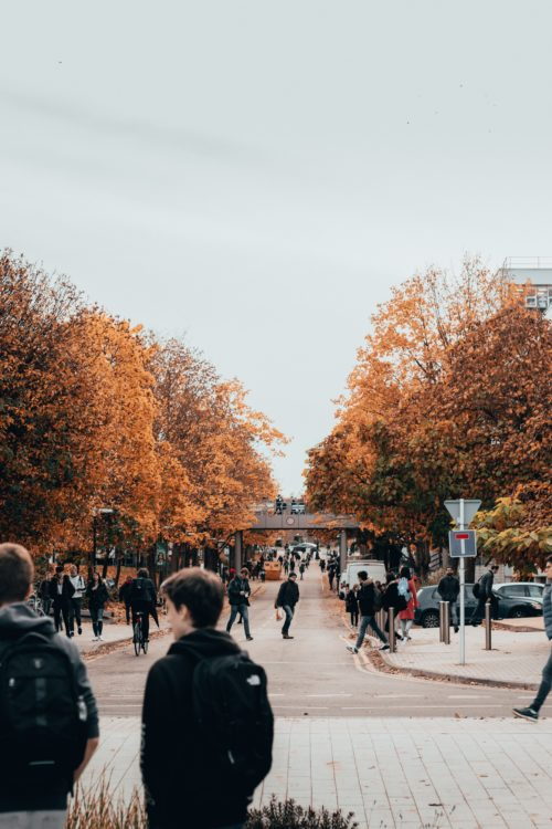 大学生達が歩いている画像