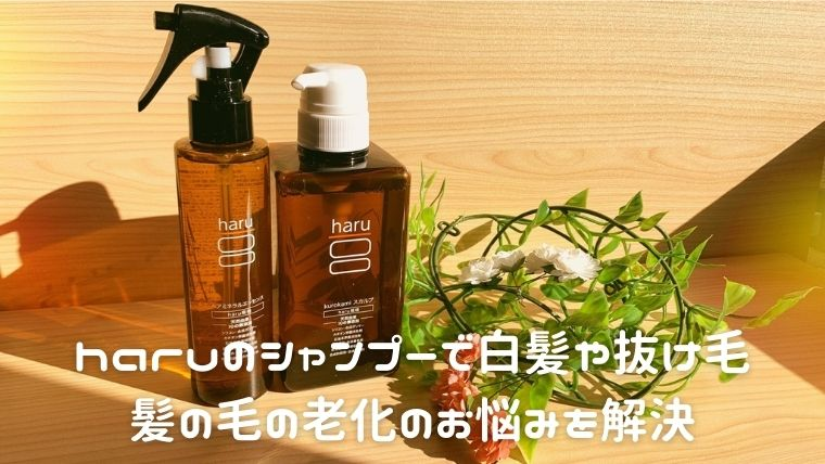 haruのシャンプーで白髪や抜け毛…髪の毛の老化のお悩みを解決